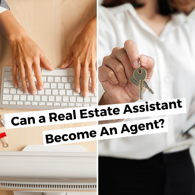 real estate admin agent